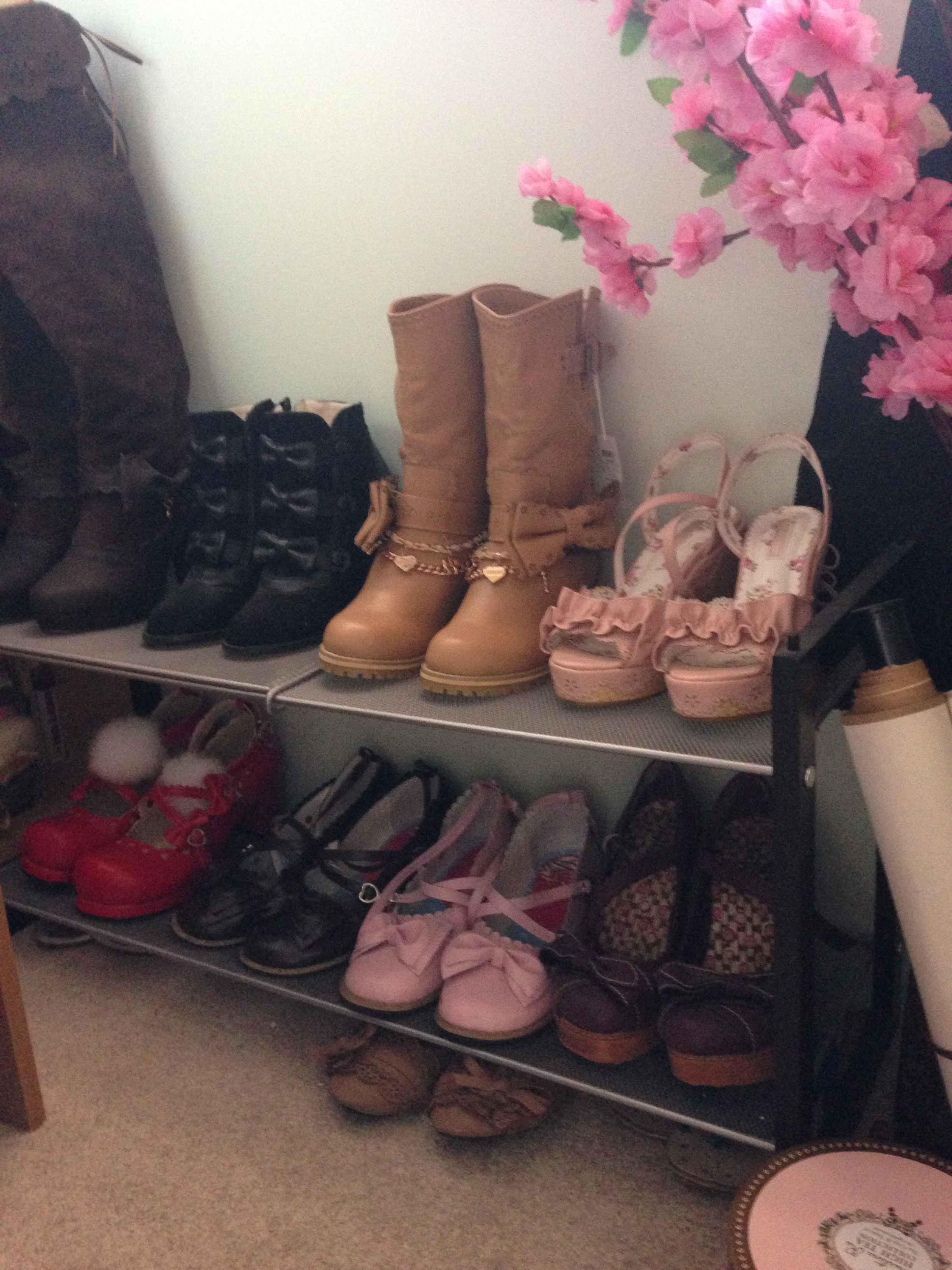Shoe collection 1