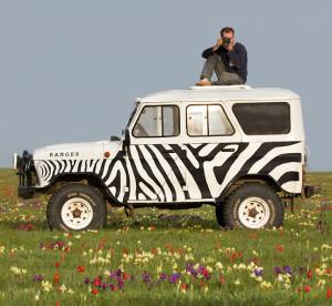 zebra uaz