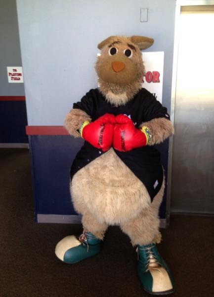 Boxing Kangaroo - TV Tropes