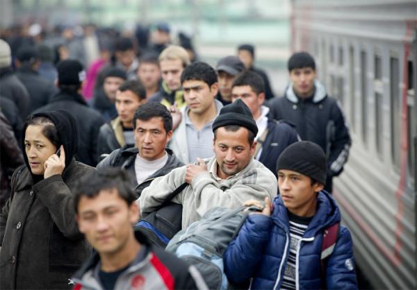 мигранты2