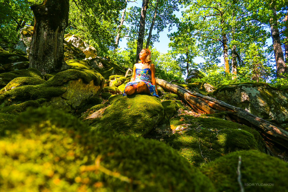 Зачем  платье в дремучем лесу?
