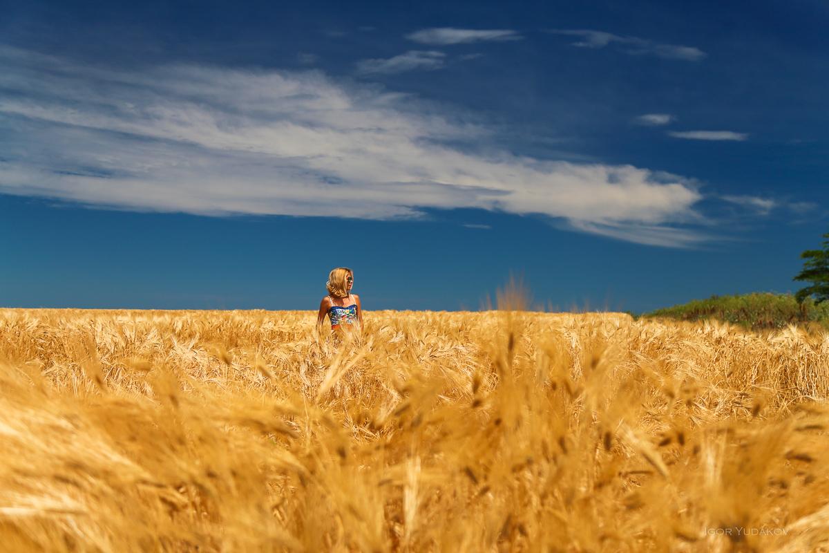 Краснодарский край, фотография из блога Марии Неласовой https://windtravel.livejournal.com/249399.html
