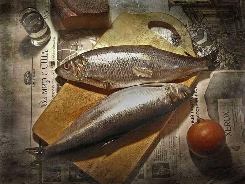 Все, что знала о рыбе - забыть