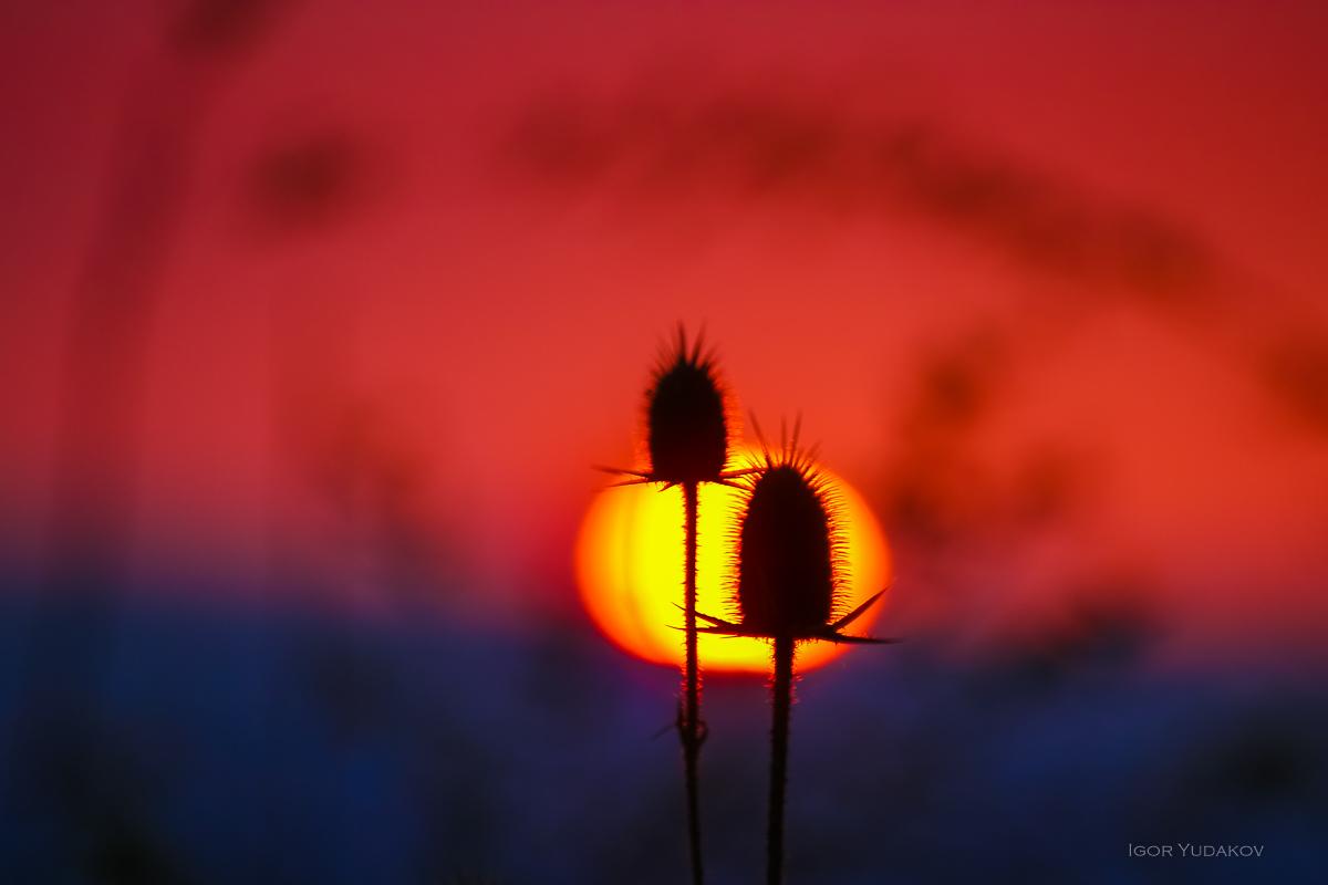 Закатываем в Адыгее