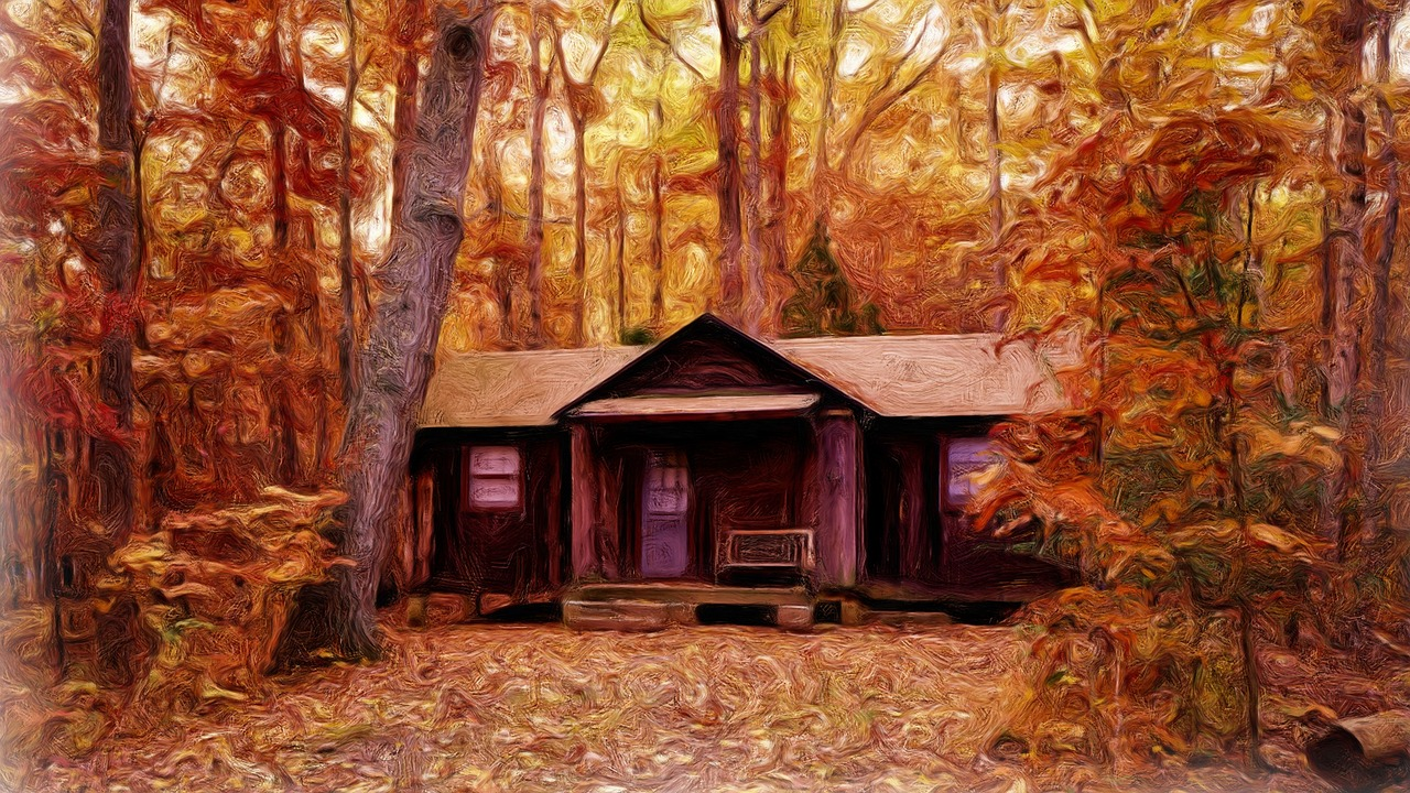 Открыта вакансия Работы мечты: отшельник в лесу