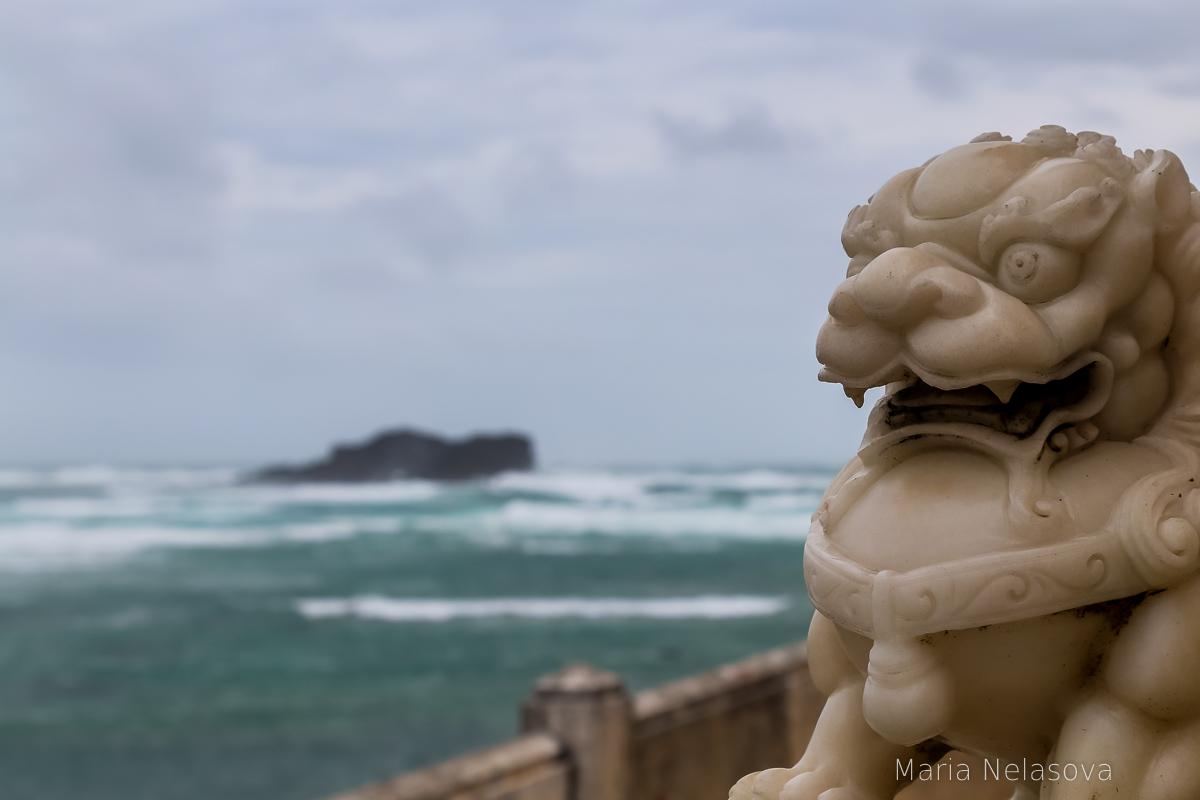 Крыша держится. Мы тоже. дождь, кайфово, нашей, маленькой, серфой, равно, кровать, сухое, Влажность, такая, южнокитайскоеморе, Тайфун, пошел, Таиланд, первый, ЮжноКитайском, зародившись, кстати, самый, странный