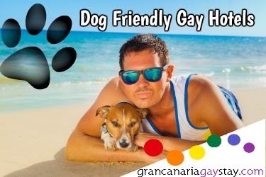 http://www.grancanariagaystay.com/