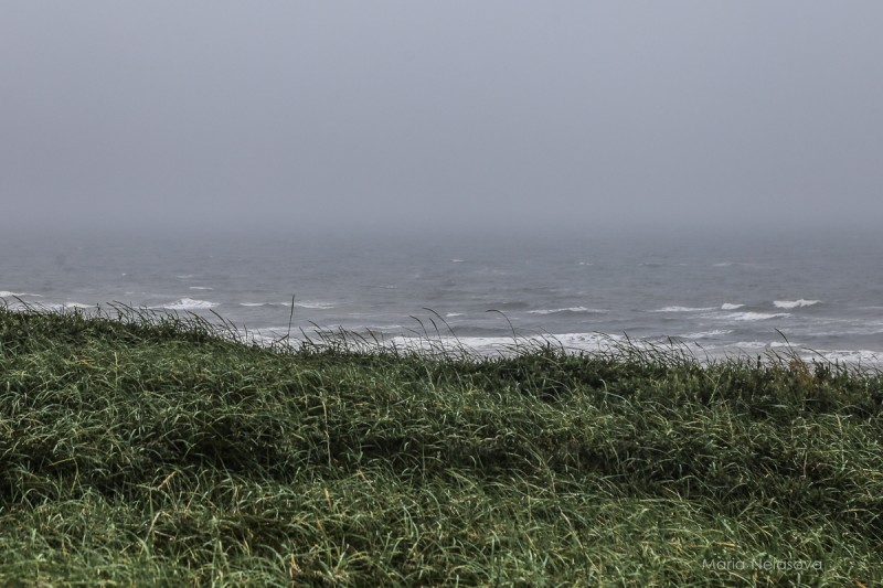 4 Белое море