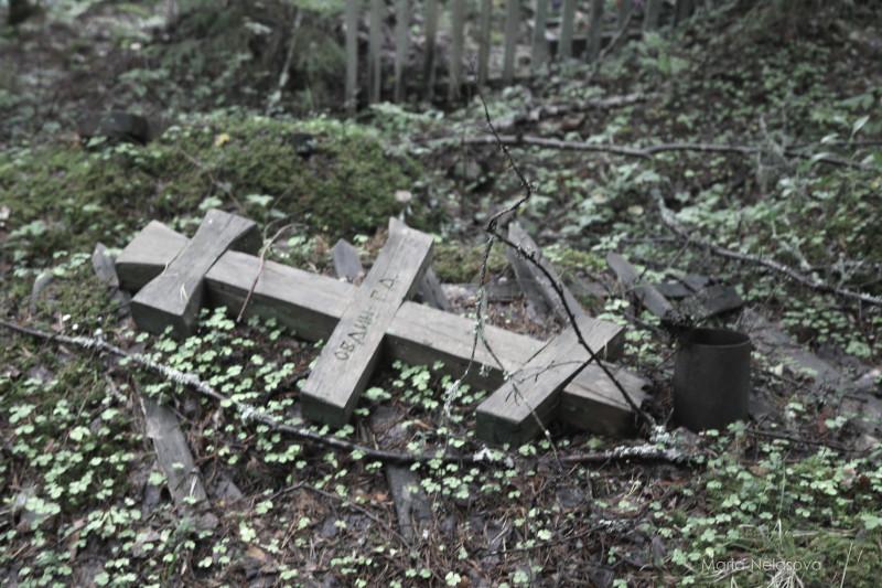 Как царский двор запретил на кладбища ходить Архангельская область