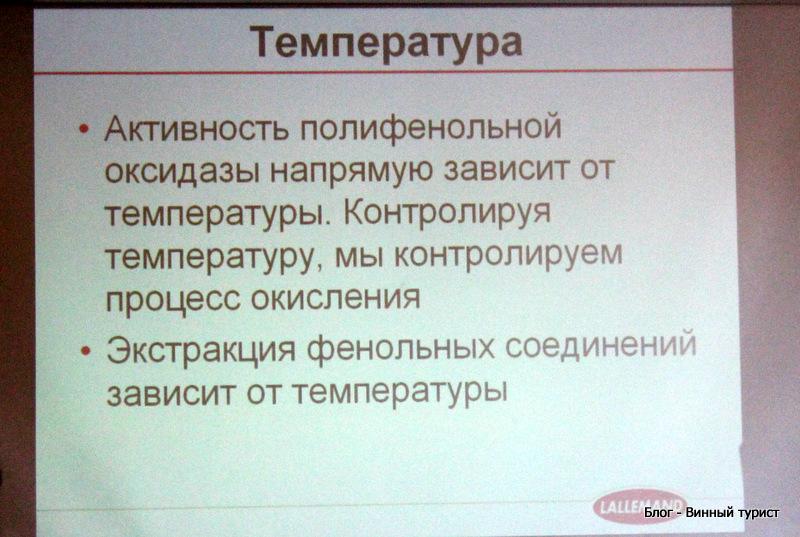 IMG_5754