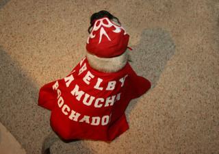 Shelby La Mucha Poochador!