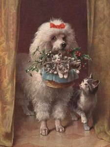 2d8cdb9ce6b8dc0868636df3f9eaf9dd--vintage-dog-poodles