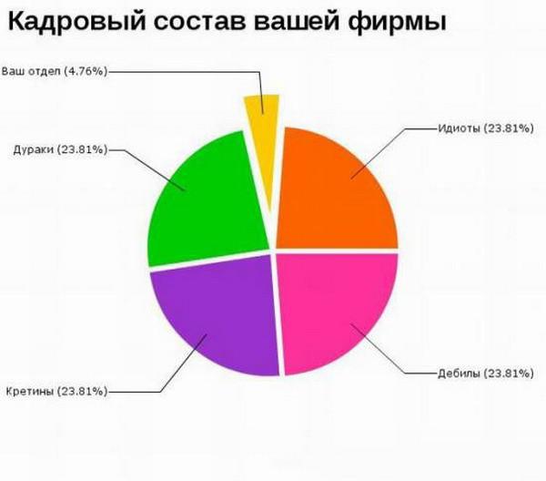 the-ridiculous-statistics-14
