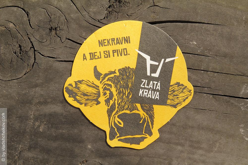Best Beer  CZ - Zlata Krava Nepomuk.jpg