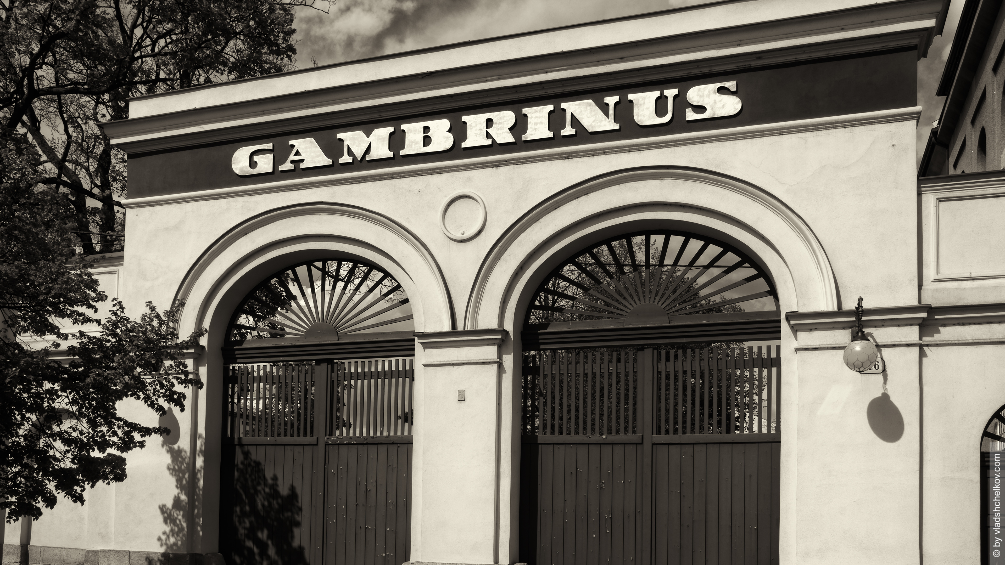 gambrinus_wallpaper