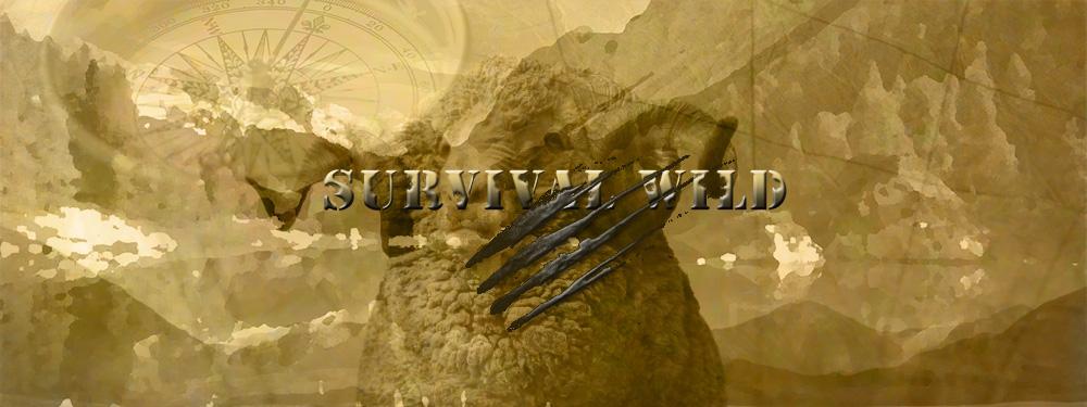 survival wild_1000_merino