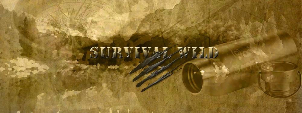 survival wild_1000_metal bottle