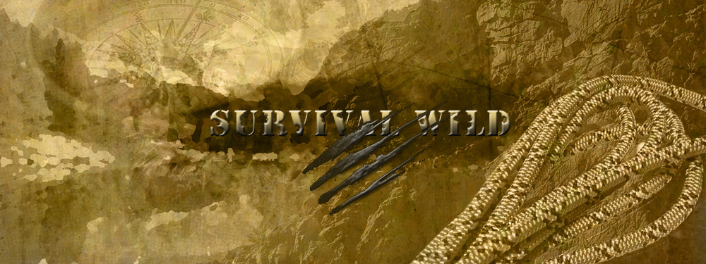 survival wild_1000_climbing_ropes