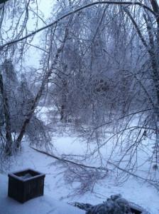 IceStorm2013 013