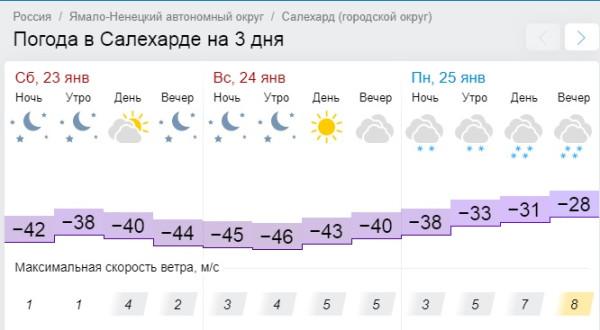 Салехард погода январь