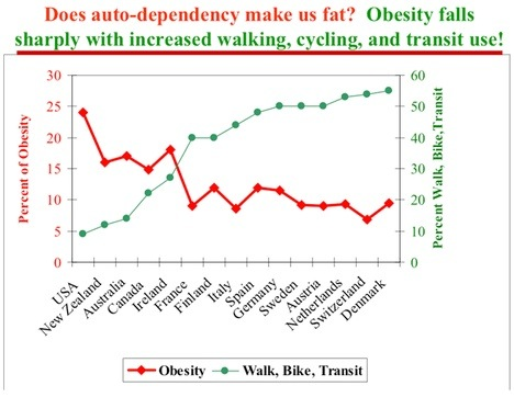 Does auto-dependency make us fat?