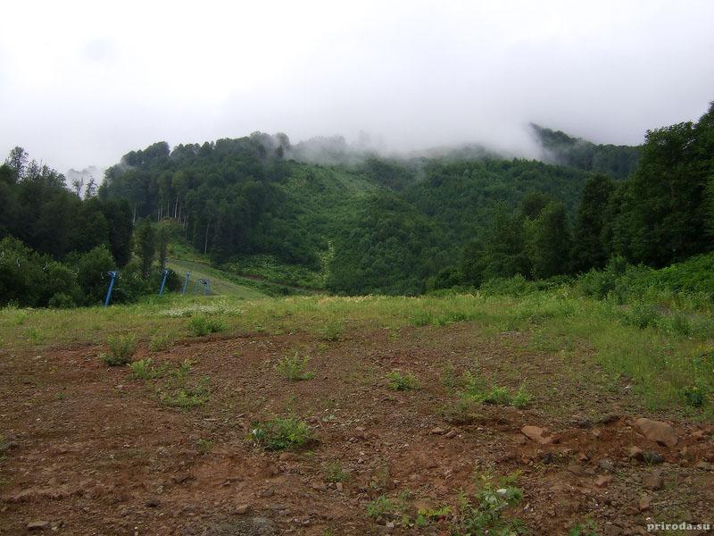 Альпика-Сервис
