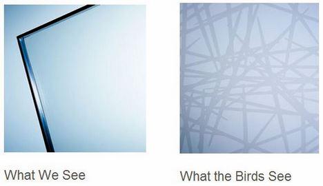 внутренняя и внешняя поверхность оконных эко-стёкол