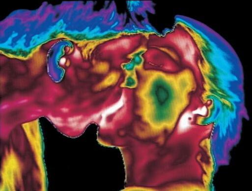 Фотография поцелуя, полученная с помощью тепловизора