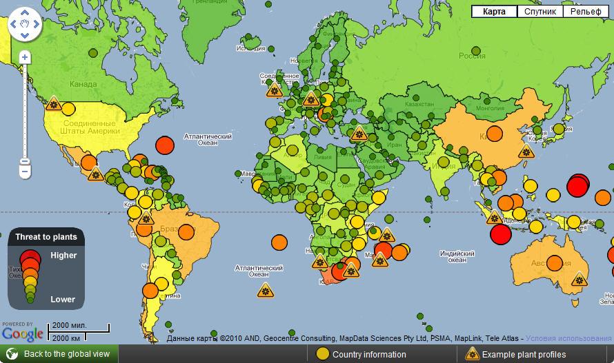 20% всех видов растений планеты находится под угрозой исчезновения