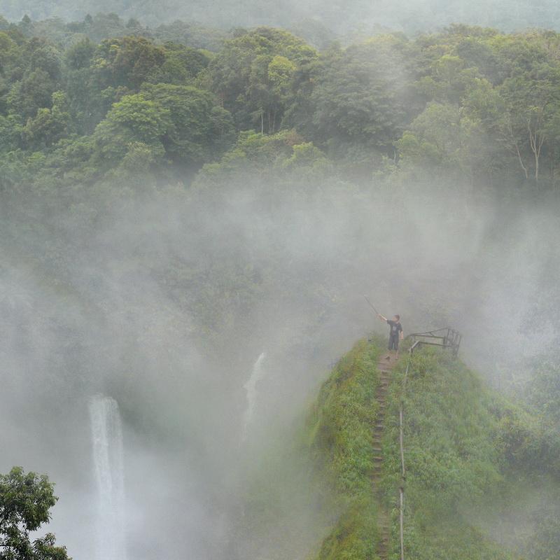 Дожди в тропических лесах