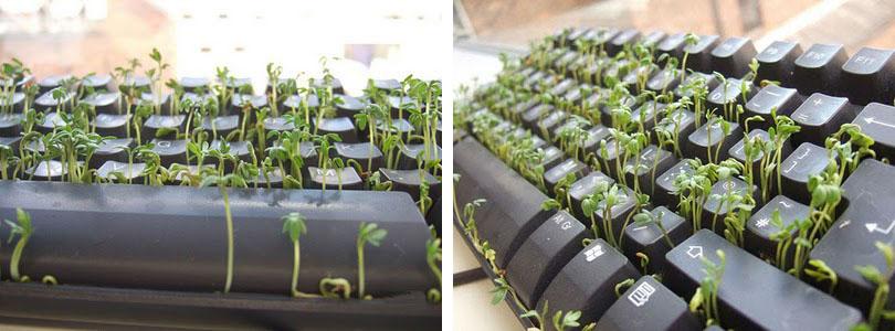 Зелёная клавиатура