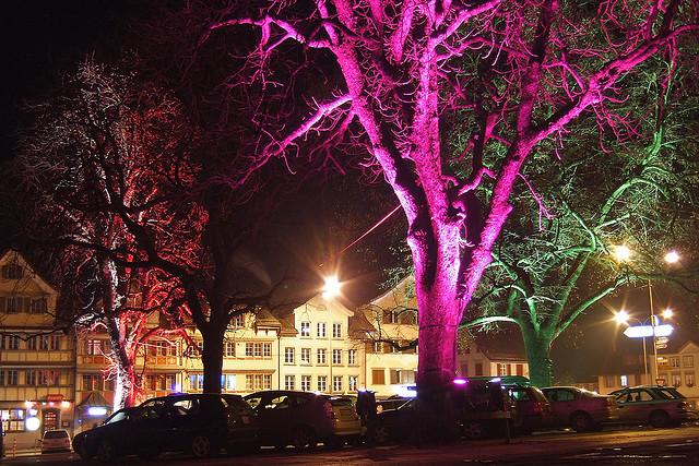 Нанотехнологии могут превратить деревья в уличные фонари