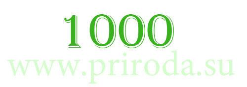 1000 статей на www.priroda.su