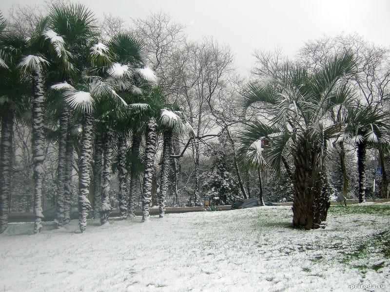 в бразилии зима когда в россии лето самое свежее эксклюзивное