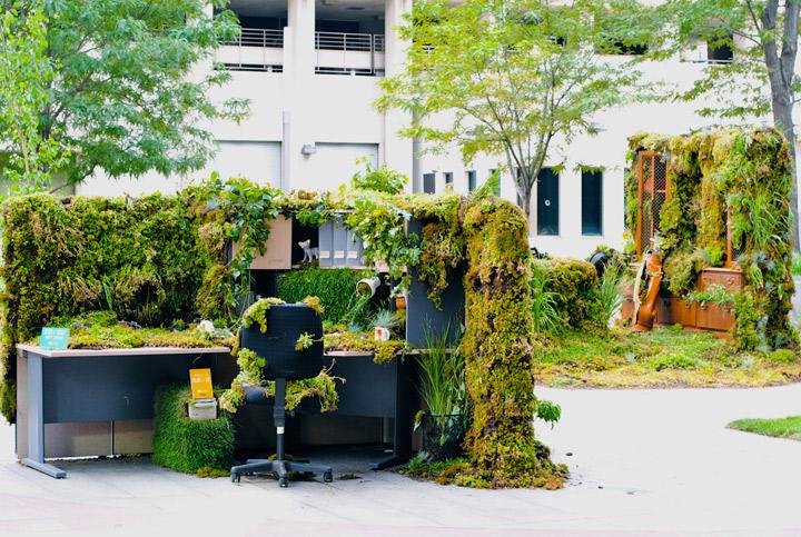 Офис, поглощённый природой
