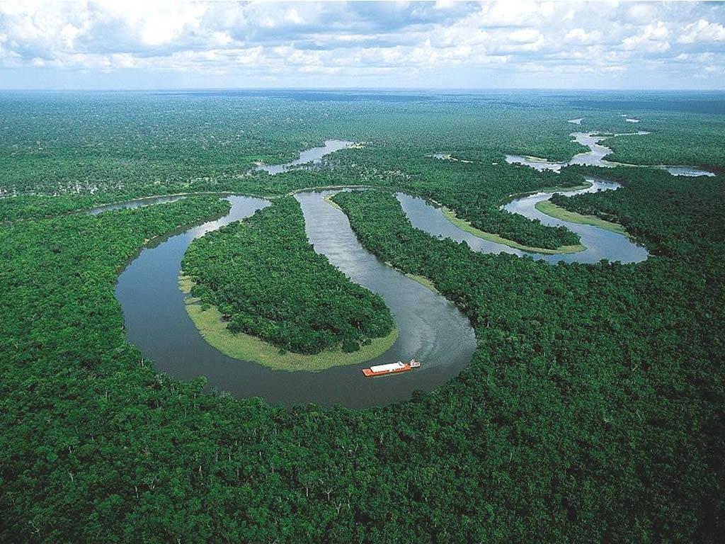 Центр видового разнообразия планеты - река Амазонка