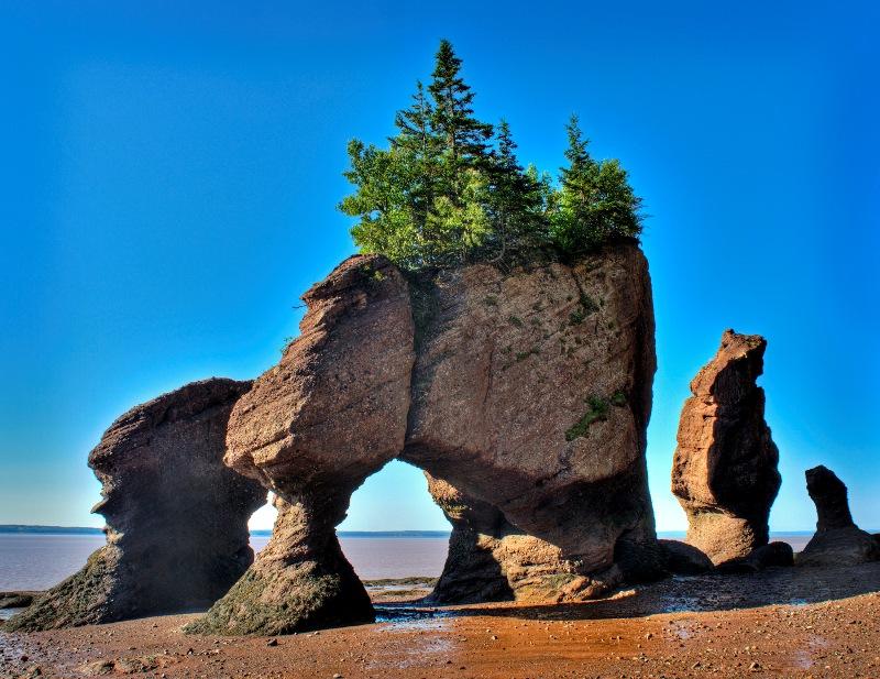 Хоупвелл. Природа Канады.