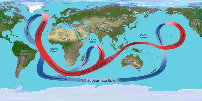 Глобальный конвейер океанических течений