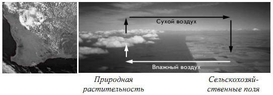 Различия в плотности облаков над природной и сельскохозяйственной зоной