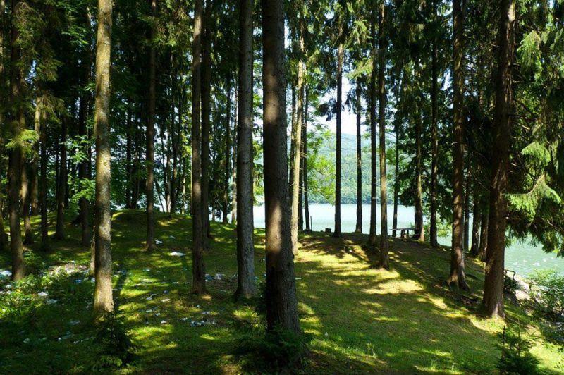 Теребле-Рикское водохранилище