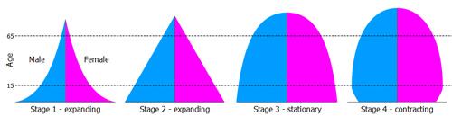 Типы возрастно-половых пирамид