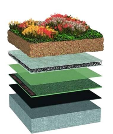 Экстенсив - озеленение крыш