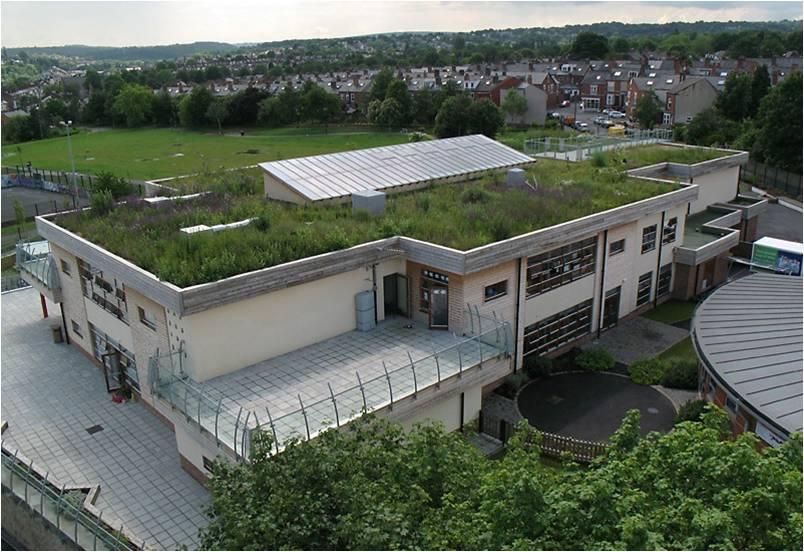 Озеленённая крыша школы