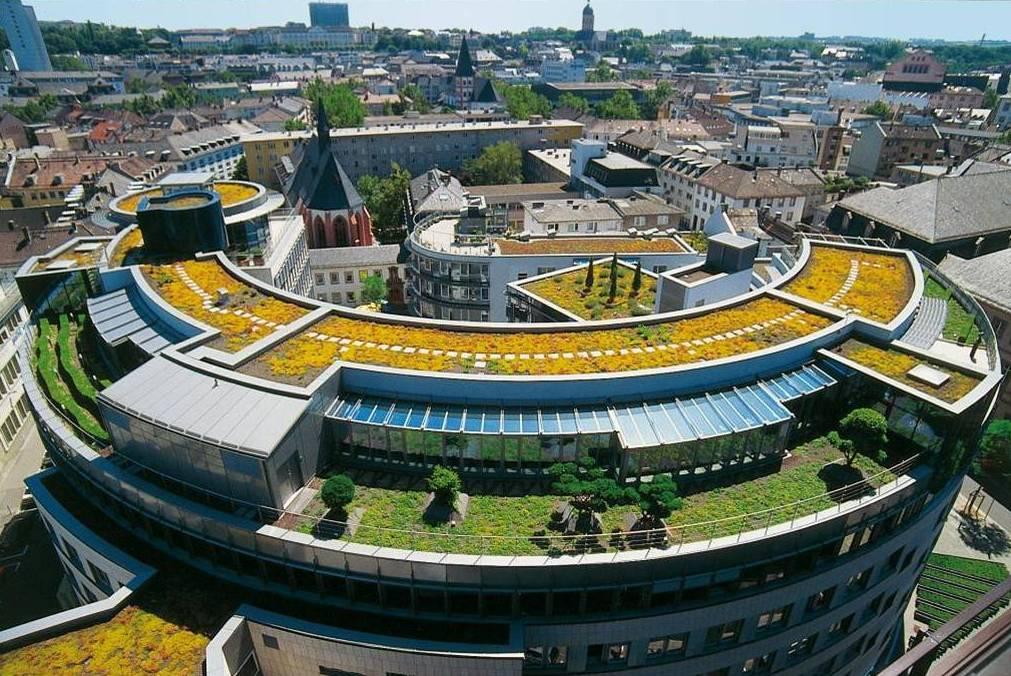 Зелёные крыши Bauder