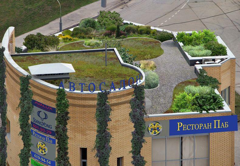 Зелёная крыша компании Илья Мочалов и Партнеры