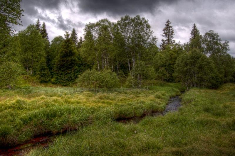 Природа Чехии
