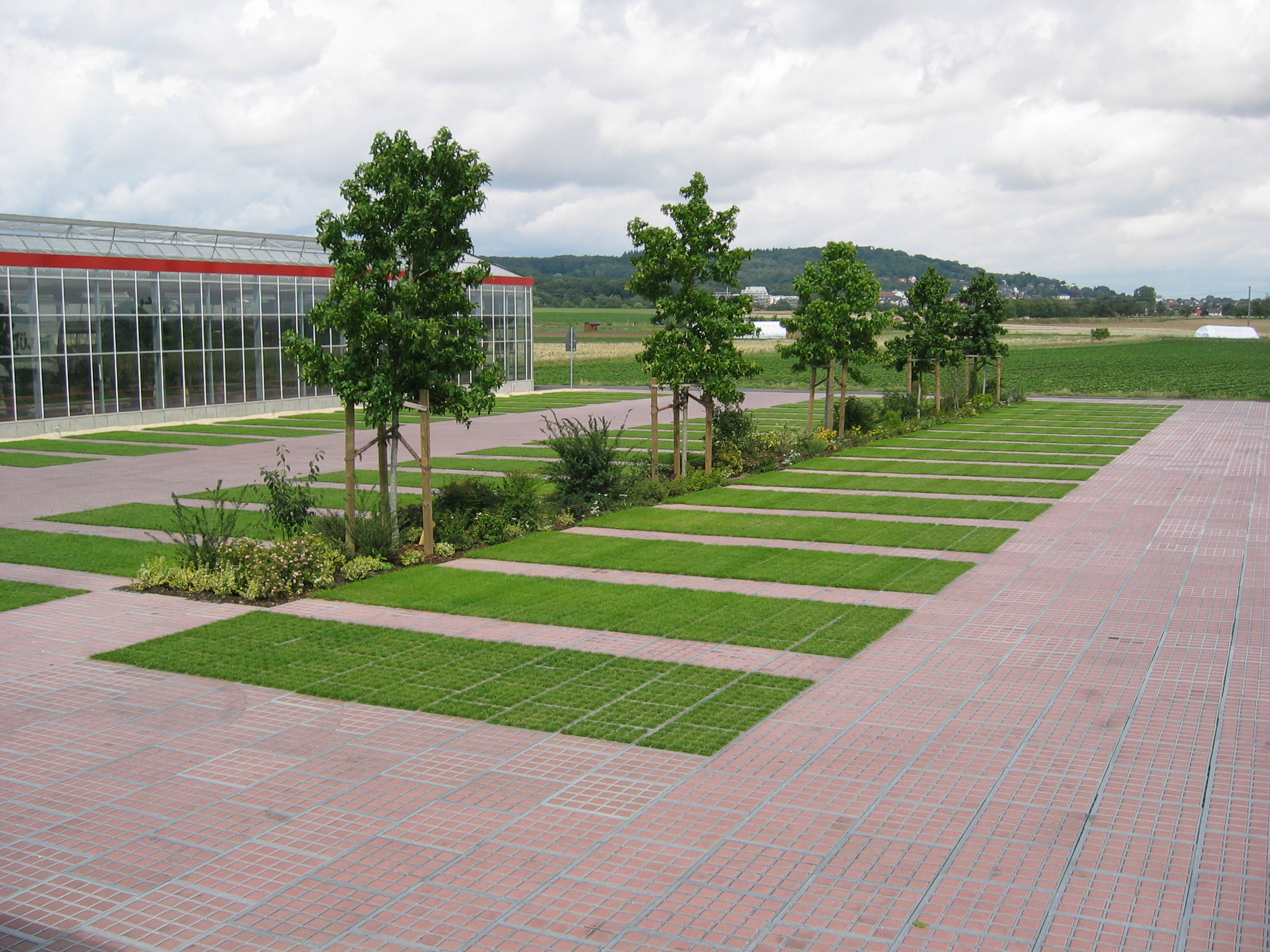 Зелёная парковка