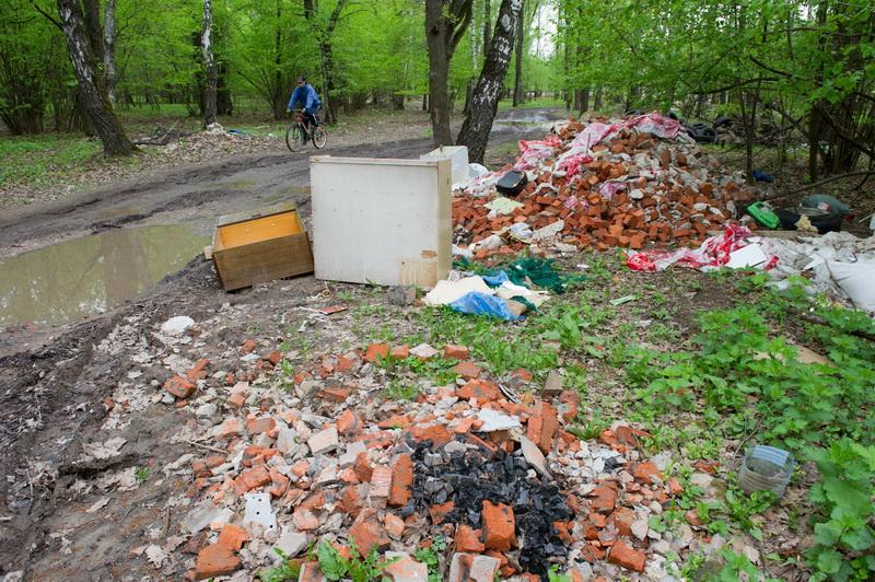 Автодор, убирающий мусор в лесу на территории Химкинского района