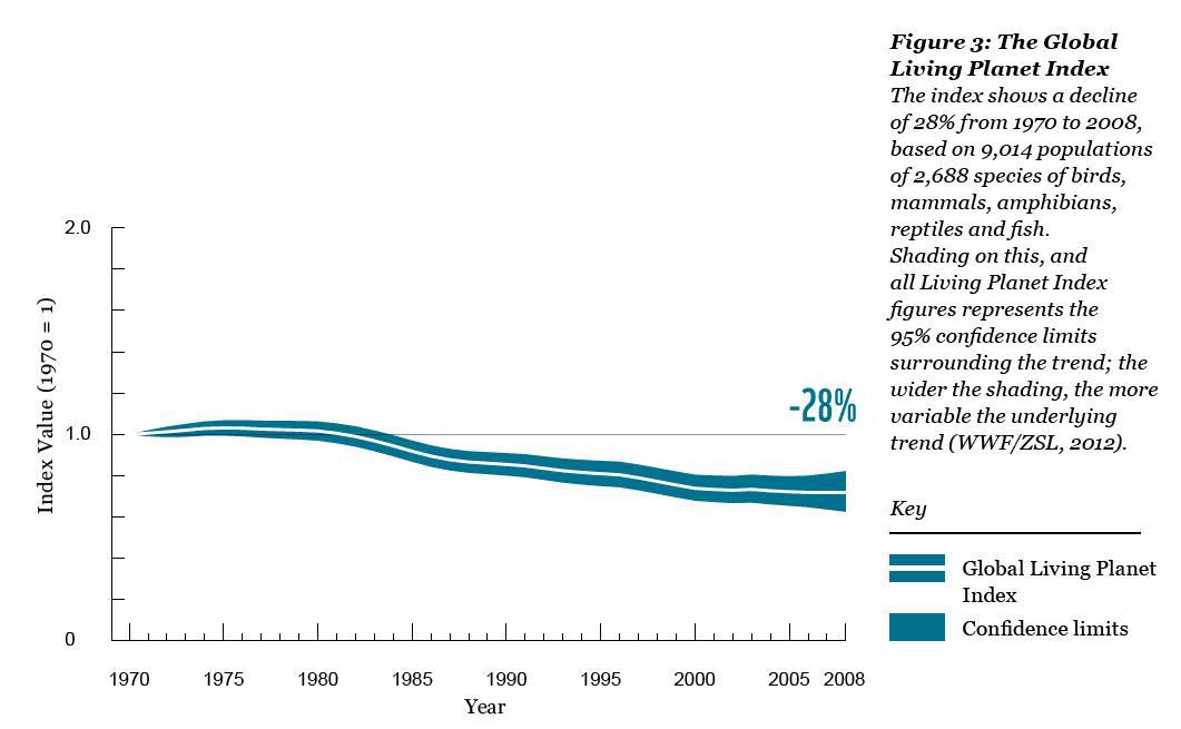 Уменьшение численности популяций позвоночных