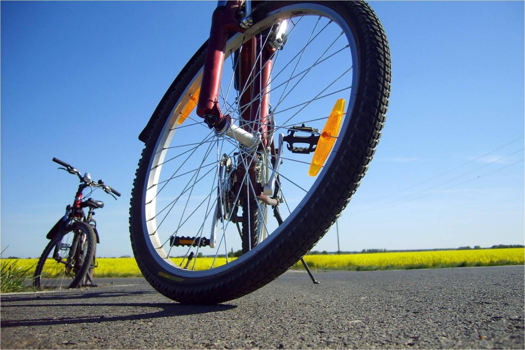 Развитие велосипедной инфраструктуры в Имеретинской низменности
